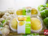 2019上海食品展|食品代加工展