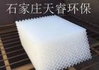 陕西汉中pp斜管填料  天睿环保保质保量供应