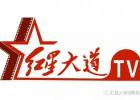 网络电影平台【红星大道】,千wan用户shua新上线流量新纪录