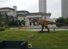 仿真动物恐龙模型出租河南仿真恐龙出租租赁