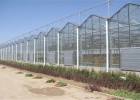 薄膜连栋温室造价 一亩薄膜温室造价 温室承建企业