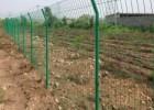 绿化圈地铁丝网 树林防护围栏网 植物园防爬铁丝围网