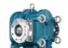 Borger 德国博格 转子泵 凸轮泵 博格泵 化工泵