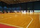 木地板篮球场及木地板羽毛球场施工建设厂家