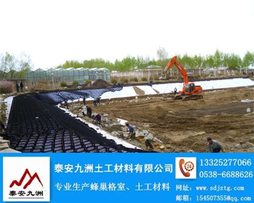 HDPE土工格室/压纹土工格室厂家/实时报价