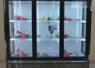 郑州质量好的鲜花柜 风冷鲜花冷藏保鲜柜