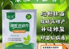 绿陇叶动力 培根壮苗 提质高增产 补硅修复 抑菌抗病毒