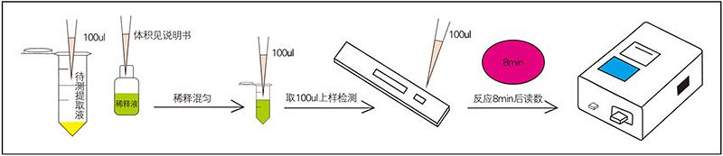 呕吐毒素快速检测试纸条检测步骤