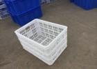 广州塑料胶筐胶桶厂家