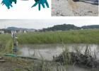 耐磨绞吸泵 液压抽沙泵 江淮泵业独家研制挖掘机液压沙浆泵
