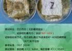 防霉剂(添加型)皮革专用防霉剂