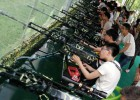 景点景区儿童游乐气炮枪 实弹射击打靶项目
