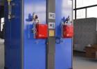 燃油燃气电站锅炉 厂家直销 量大从优 欢迎选购 支持定制