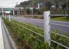 湖北公路缆索护栏价格,景区缆索护栏厂家