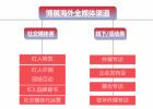 海外传媒公司 博展专注中国品牌海外传播