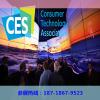 2021年美国电子展/2021年美国CES展