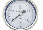 SAS系列壓力表