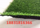 仿真绿色草坪网A青海仿真绿色草坪网A仿真绿色草坪网生产