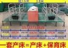 泊头滕硕厂家直销母猪产床 保育床 定位栏多少钱