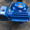 CCWS250减速机生产双级减速机