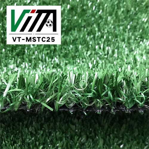 VT-MSTC25 (2)