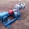 KCG10/0.6防爆高温齿轮油泵