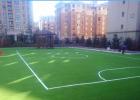 填充&免填充足球场人造草坪分类推荐