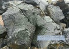驳岸围边石精品黑色景观石 广东太湖石假山