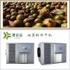 油茶籽烘干机自动化干燥箱