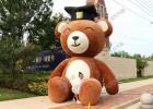大型毛绒熊气模活动方案_商场主题美陈_重庆气模厂