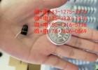 升级版CVK458耳机 数字一对一耳机cvk耳机