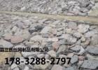 安平县固滨笼生产厂家 加强型固滨笼厂家