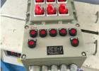 工业现场防爆电气控箱