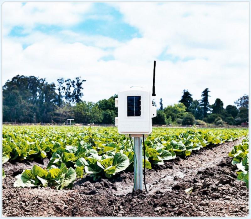 美国Davis 无线土壤温湿度站06345CS
