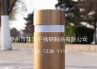 长安街护栏系列不锈钢防撞柱升降防撞柱路桩道桩阻车器