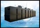 景洪中小型門診衛生院污水處理器
