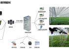 福建温室大棚自动化控制 福建智慧农业物联网