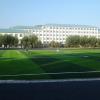 足球场(可定做)人造草坪生产厂家
