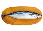 秘鲁鲭鱼广州进口清关费用有哪些 深圳港挪威鲭鱼进口清关费用