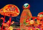 直销2019国庆春节手工艺彩灯展,自贡灯会制作公司