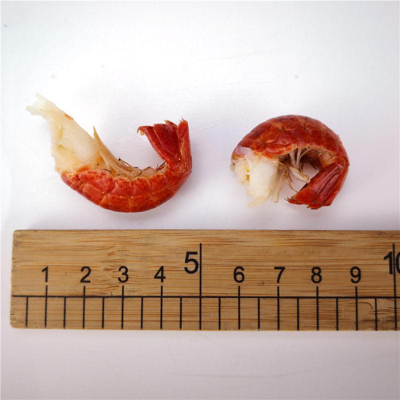 冻虾尾厂家直销 品质保证 大量供应