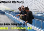 现代化养殖帆布鱼池定做-鱼苗帆布培育池-各类水产养殖水池
