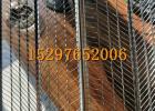 抹灰镀锌模板网 灌浆网模 混凝土灌浆墙用钢网