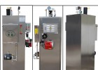 洗涤企业洗涤熨平供汽专用燃气蒸气发生器