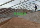 【河北大棚】遵化温室大棚覆盖材料与光照强度的关系