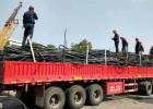 苏州电缆线回收 苏州电缆线回收公司 苏州回收电缆线价格