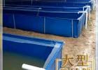 储水养殖帆布水池直销环保鱼池牛蛙池 养殖水蛭必备水池
