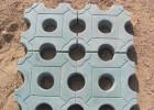植草砖模具