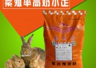 如何提高仔兔成活率,母兔吃什么饲料好