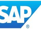 数字化erp企业管理,SAP库存管理软件